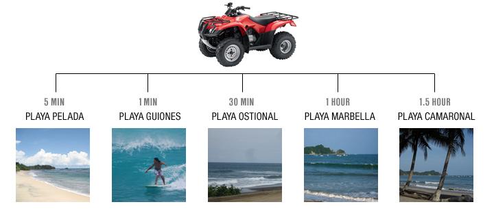 surfingchart